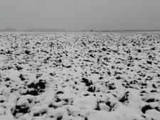 Aanrader: Hardlopen in de sneeuw