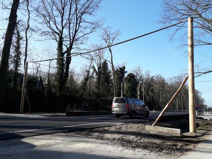 In Herenthout werd in februari deze eekhoornbrug geplaatst.