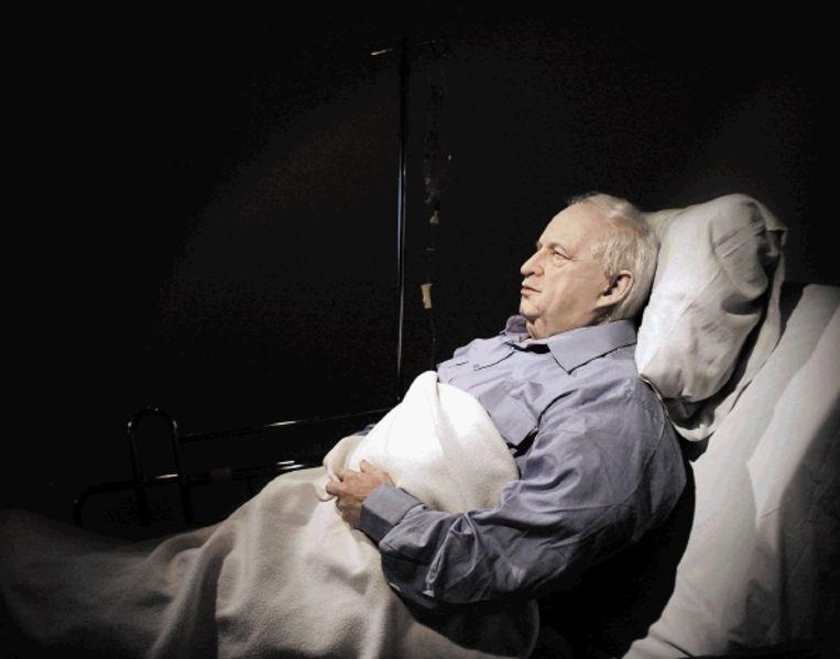 Het levensgrote, ademhalende beeld van de comateuze Ariel Sjaron. Het kunstwerk is vanaf morgen te zien in een galerie in Tel Aviv. (FOTO EPA ) Beeld EPA