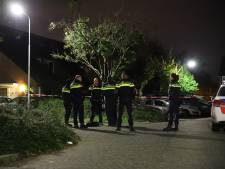 Vermoedelijk zwaar vuurwerk gegooid bij woning in Tiel, buurtbewoners horen harde knal