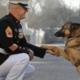 Hond Lucca krijgt hoogste onderscheiding voor haar heldendaden