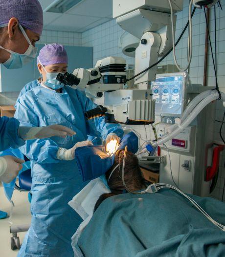 Uniek! Chimpansee Fiffy met staar kan weer zien na operatie door Leidse oogartsen
