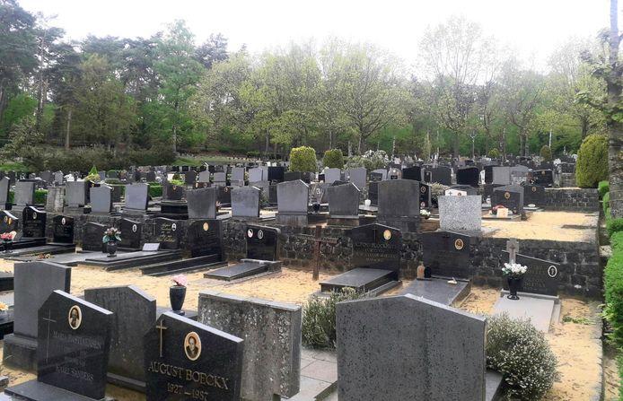Op de Herentalse begraafplaatsen, zoals hier aan de begraafplaats Bosbergen, zullen in de toekomst de oude graven sneller verdwijnen
