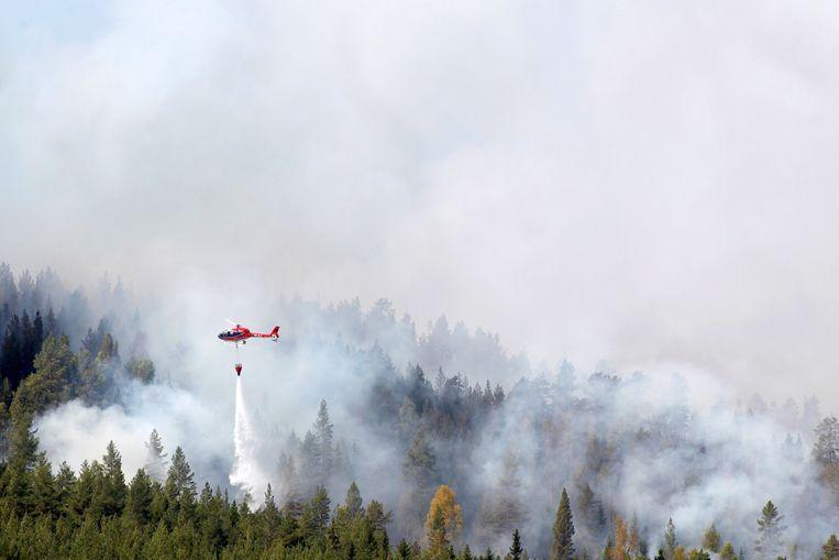 Eén van de gigantische bosbranden in Zweden. Beeld EPA