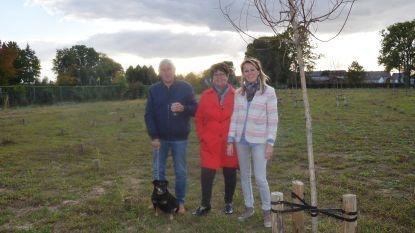 Eerste dierenbegraafplaats van het land komt maar traag op gang: twee dieren begraven op drie maanden tijd