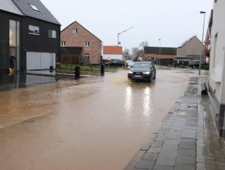 Waterpeil bereikt piek: pompen of verzuipen op verschillende plaatsen in Vlaanderen