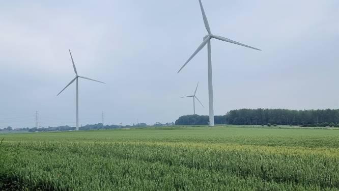 Raad van State vernietigt vergunning voor zeven Lommelse windturbines waarvan er al vijf staan