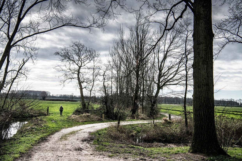Landgoed Middachten krijgt in april het Wildlife Estates Label, een Europees label voor particuliere natuurterreinen die veel doen aan biodiversiteit en omgang met de omgeving.