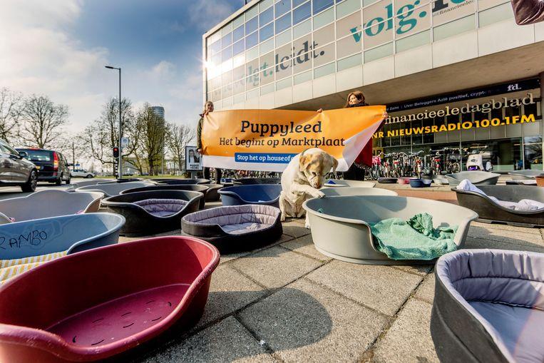 'Puppyleed, het begint op Marktplaats' staat op het spandoek tussen honderd hondenmanden voor het kantoor van Marktplaats in de Wibautstraat.     Beeld Jean-Pierre Jans