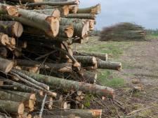 Hoop gedoe over een bosje en een poel aan de Spoorweg in Zeeland