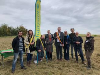 Gemeente maakt werk van nieuwe toekomst als natuurgebied voor Zandgroeve Kerkom