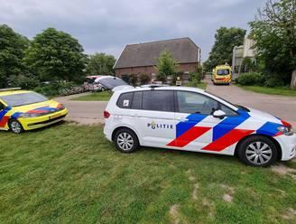 Koe slingert boerin over hek in Gelderland: slachtoffer zwaargewond naar ziekenhuis
