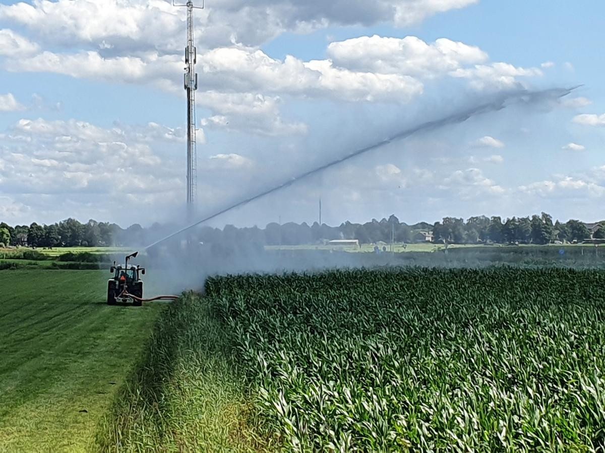 Boeren en tuinliefhebbers mogen van Waterschap Aa en Maas hun grond nog beregenen.