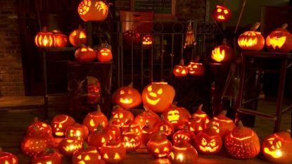 Halloweenwandeling op en rond camping Zavelbos