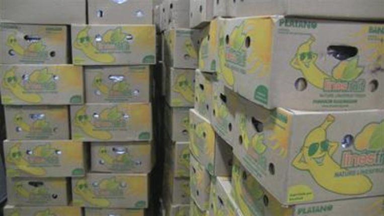 De drugs waren verstopt in een container met bananen. Beeld OM