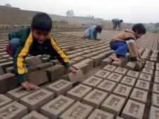 Bedrijf moet verplicht kinderarbeid uitbannen