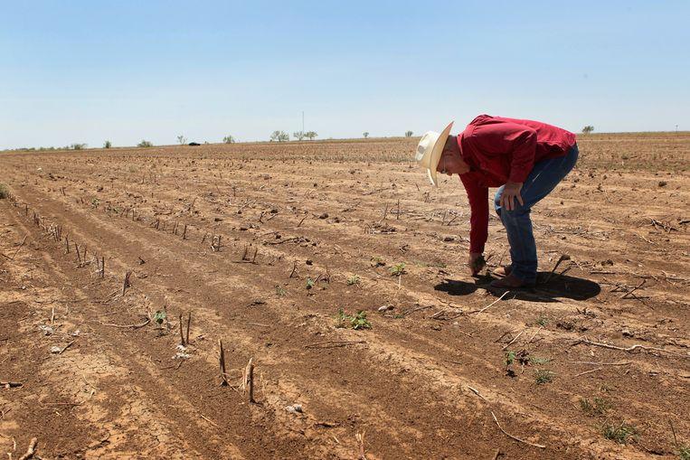 Boer Jerry Gannaway op zijn katoenplantage in Texas.