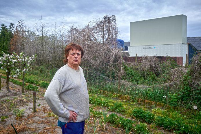 Jan Willems bij zijn dode coniferenhaag. Op de achtergrond de vermoedelijke oorzaak,  de chemische luchtwasser van varkensbedrijf Jovar op Schuifelenberg in Zeeland.