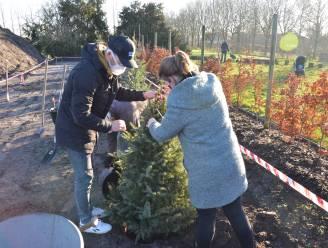 Moerbeekse gezinnen planten kerstboom aan in opvangbos