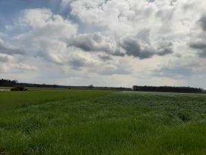 1600 Bewoners Baarle-Nassau en Alphen-Chaam willen gesprek over windmolens en zonneweides