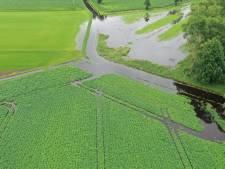 Kritiek boeren op waterschap De Dommel: 'Schade na hoosbuien onnodig groot'