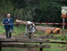 Het bos bij Leersum in? Kijk dan goed omhoog, want daar schuilt het gevaar