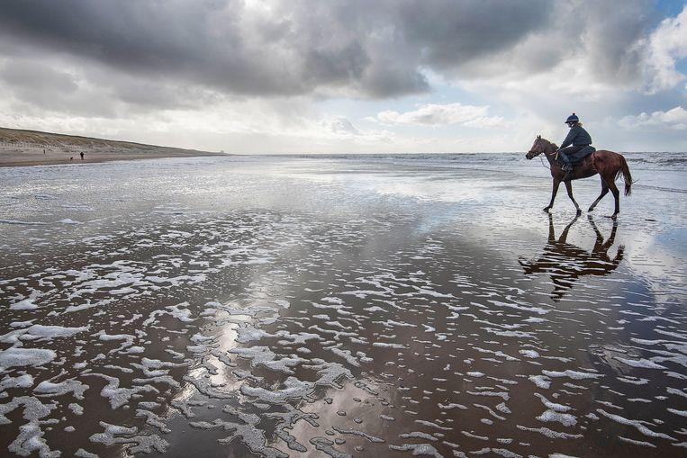 Een ruiter traint haar renpaard op het strand tussen Noordwijk en Zandvoort. Beeld Guus Dubbelman / de Volkskrant