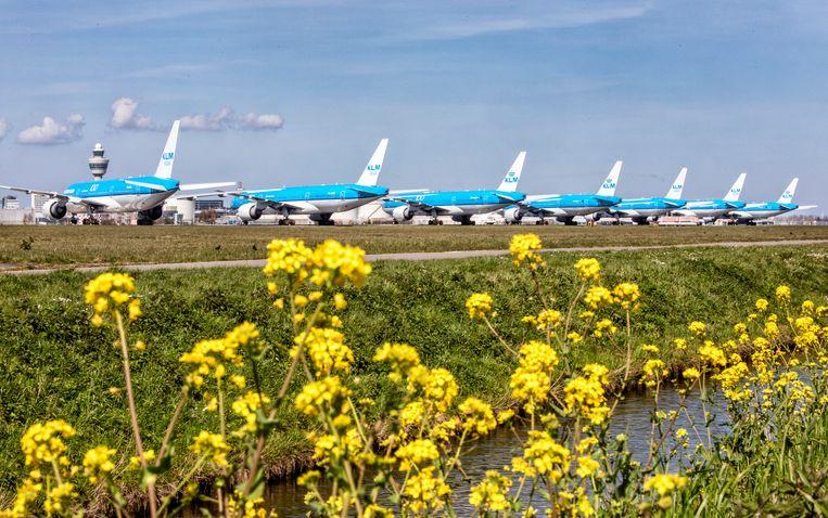 Vliegtuigen van de KLM staan door de coronacrisis gestald op de Aalsmeerbaan.  Beeld Raymond Rutting / de Volkskrant
