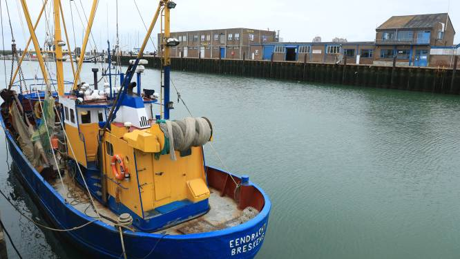 Sluis zet ondernemers en bewoners Breskens in als pion voor behoud garnalenvisserij