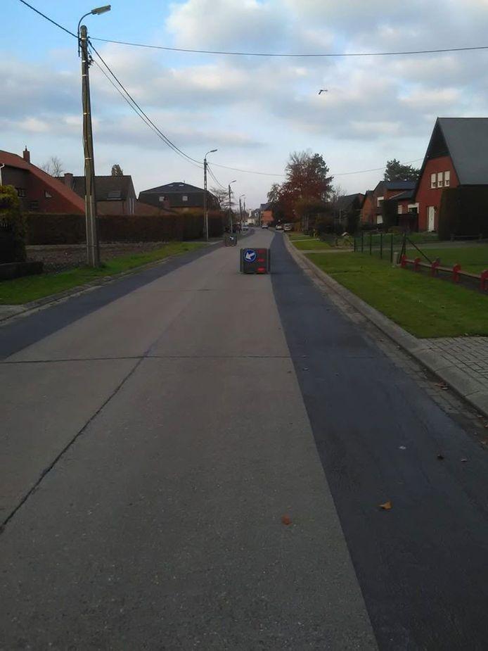 De bloembakken moeten de snelheid in de Elzenstraat doen dalen.