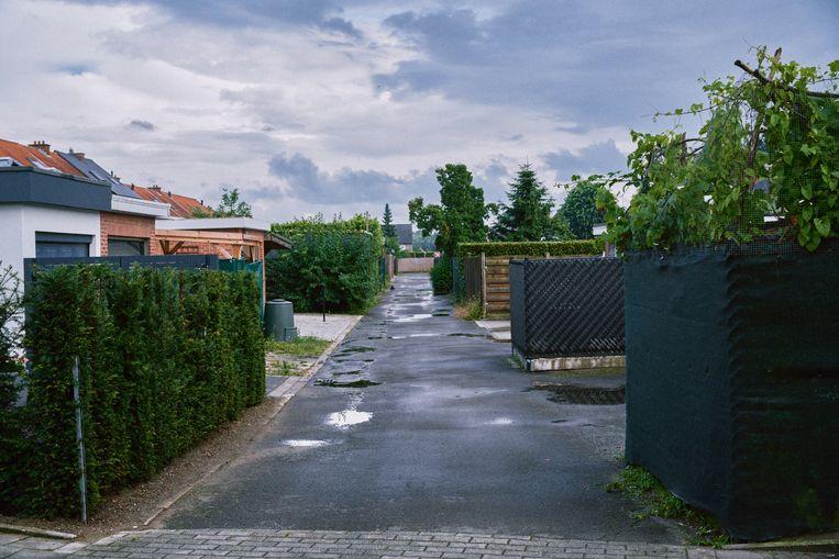 In Puurs-Sint Amands wonen veel mensen zonder het te weten in overstromingsgebied. Beeld Thomas Sweertvaegher