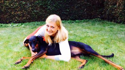 """Verschillende honden en katten vergiftigd in Boortmeerbeek: """"Jack heeft verschrikkelijk afgezien"""""""