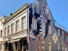 Pleidooi: 'Tijd voor een commissie die zich over Tilburgse muurschilderingen buigt'