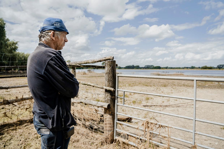 De weilanden van landbouwer Dirk Both zijn nog steeds ondergelopen. Beeld © Eric de Mildt