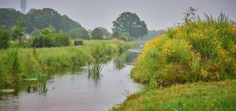 Water droogde op en vissen stierven, maar na een ingreep is de Snelleloop klimaatrobuust