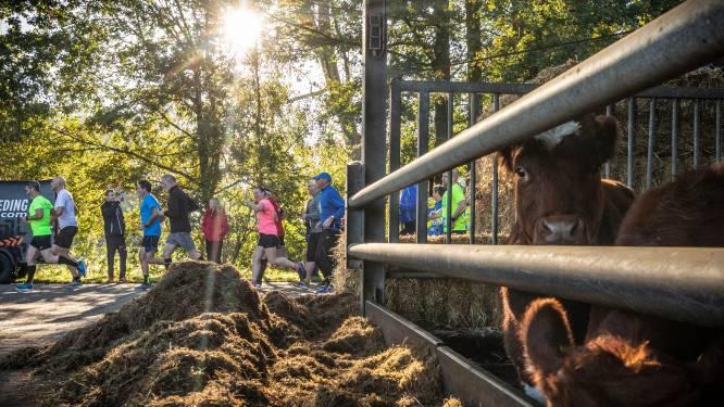Fraaie weer stimuleert deelname Jongkindloop in Lattrop