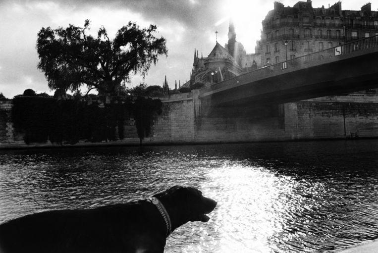 Ook nu drentelt Modiano als een snuffelende straathond rond een serie mysterieuze, kortstondige ontmoetingen in Parijs. Beeld Gamma-Rapho via Getty Images
