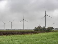 Extra windmolens in Zwolle? Tolhuislanden wil deze zomer energieplan klaar hebben