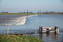 Hoogwater in de Waal bij Nijmegen.