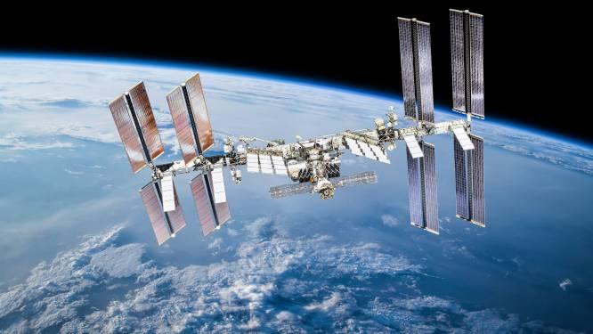 Waarom NASA babyoctopussen naar het ISS stuurt
