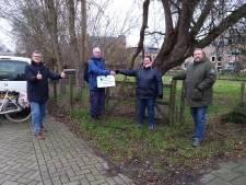 Schapen blijken redders in nood: Delftse weide blijft behouden