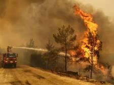 Rotterdamse stichting haalt ton op voor slachtoffers bosbranden Turkije