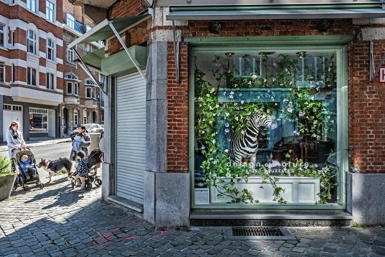 Design et Nature levert naar goede Parijse traditie spectaculaire taxidermie. Beeld Tim Dirven