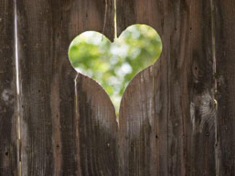 hartekreet-hoofd1-jpg.jpg