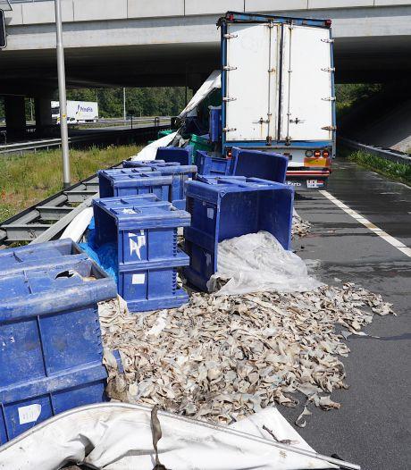Afgevallen lading dierlijke resten zorgt voor stankoverlast in Oosterhout: 'Ging bijna over m'n nek'