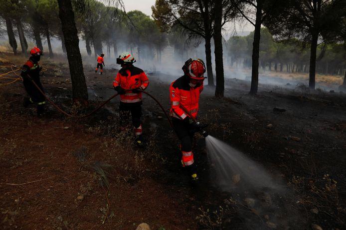 Brandweermannen doven vuur in de bossen nabij Ronda in Estepona.