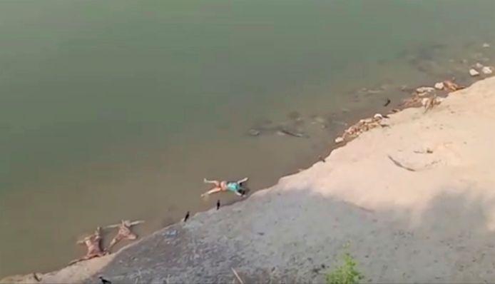 Des corps échoués dans le Gange à Ghazipur, en Inde.