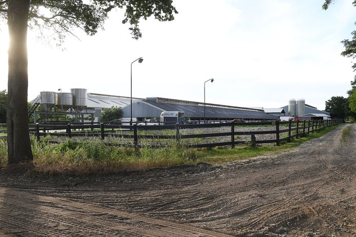 Het voormalige nertsenfokkersbedrijf aan de Klotweg 1 in Landhorst.