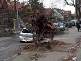 LIVE: Treinverkeer gestaakt, daken van gebouwen, Schiphol schrapt alle vluchten