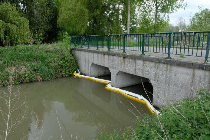 De olie kwam in de Oude Schelde terecht, waar de brandweer een dam legde om de vervuiling tegen te houden.
